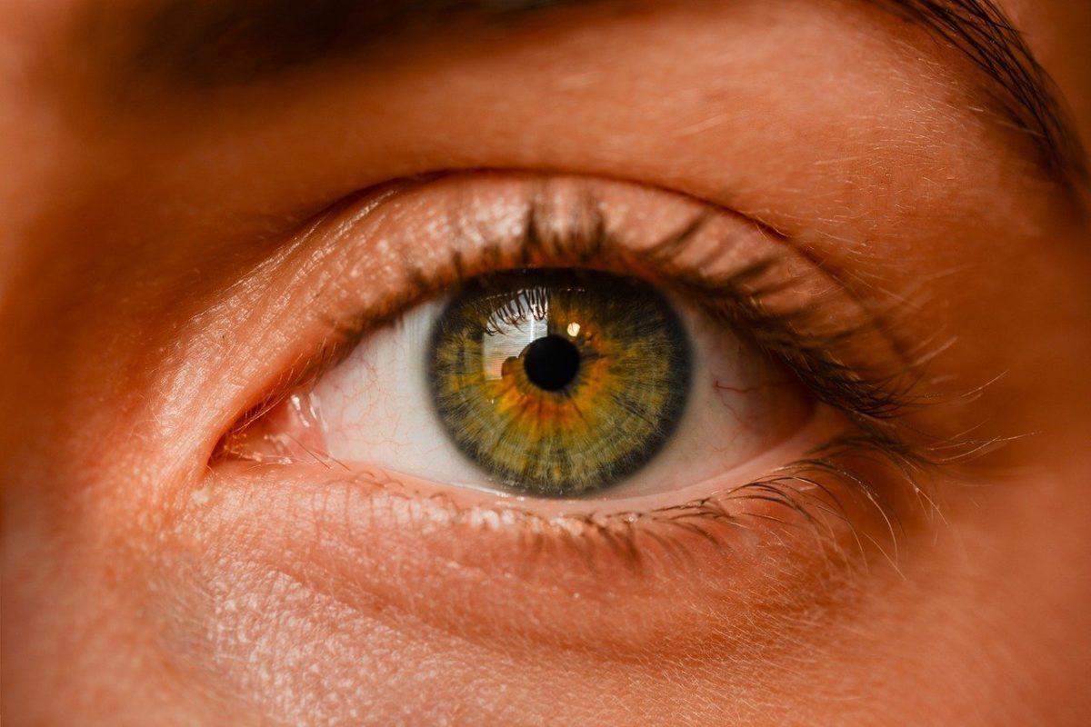 Oczy to nadzwyczajny organ. To dokładnie dzięki nim odczuwamy.